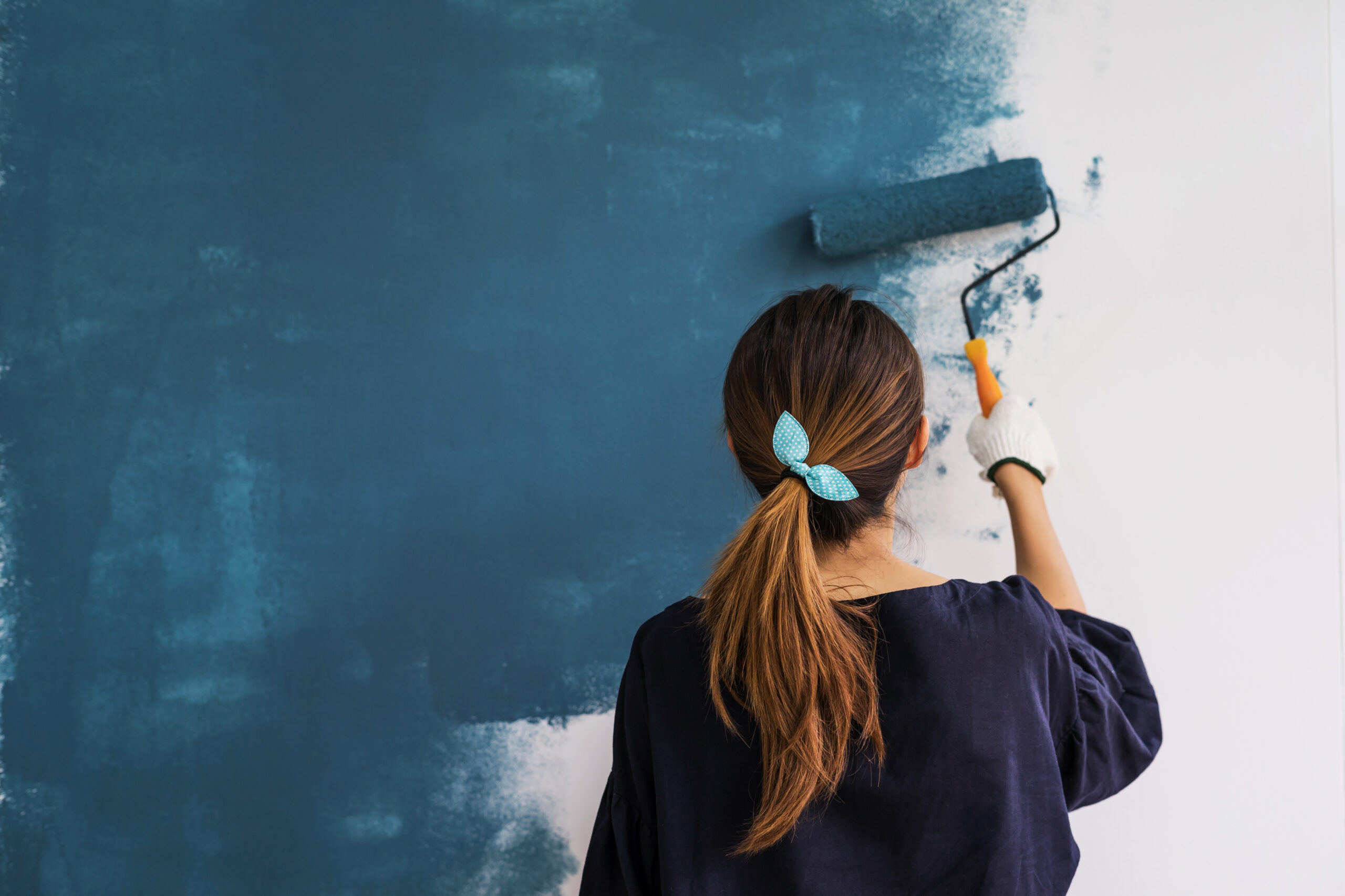 Repaint the house